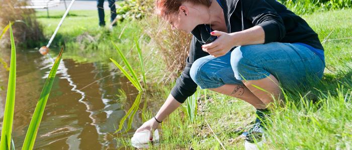 Deltagare tar vattenprov i Kävestas damm, för en laboration i naturvetenskap.