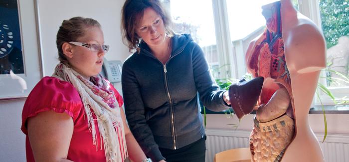 Två deltagare arbetar med en docka som visar en människas inre organ.