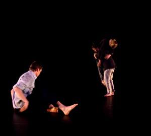 Danslinjens slutproduktion 2014 - 11