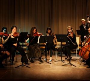 Klassisk ensemble om tio personer på olika stränginstrument.