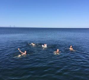 Malmö - 3