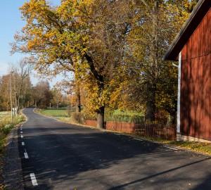 En bilväg leder rakt framåt. Till höger står en stor röd lada.