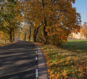 Vägen fortsätter längs en allé. Långt bort syns ett stort gult/orange stenhus.