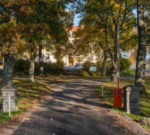Vägen leder in på skolområdet och omges av träd. Bakom träden skymtas samma gul/orange stenhus som synts tidigare.