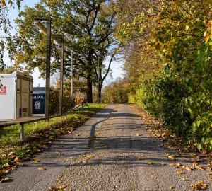 En grusväg omgärdad av träd och häckar. Till vänster syns en släpkärra med texten Circle K.